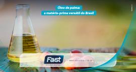 Óleo de palma: a matéria-prima versátil do Brasil