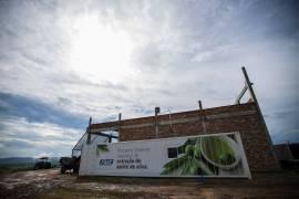 Fast possui o único sistema 100% nacional de extração de azeite de oliva